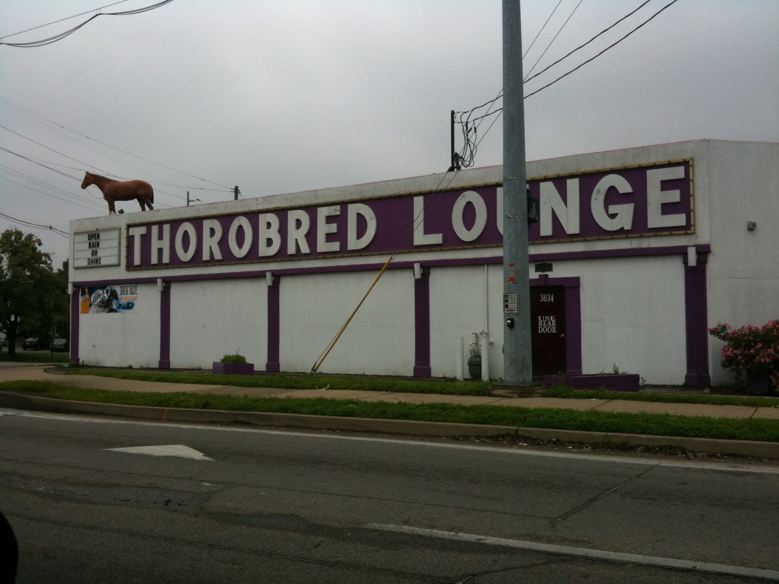 wtf cool stuff the best signs places organic my fave amazing cool stuff  21 Funniest Strip Club Names & Signs (photos)