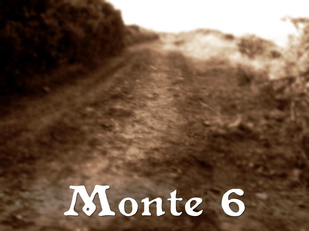 monte 6
