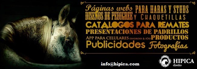www.hipica.com.ar
