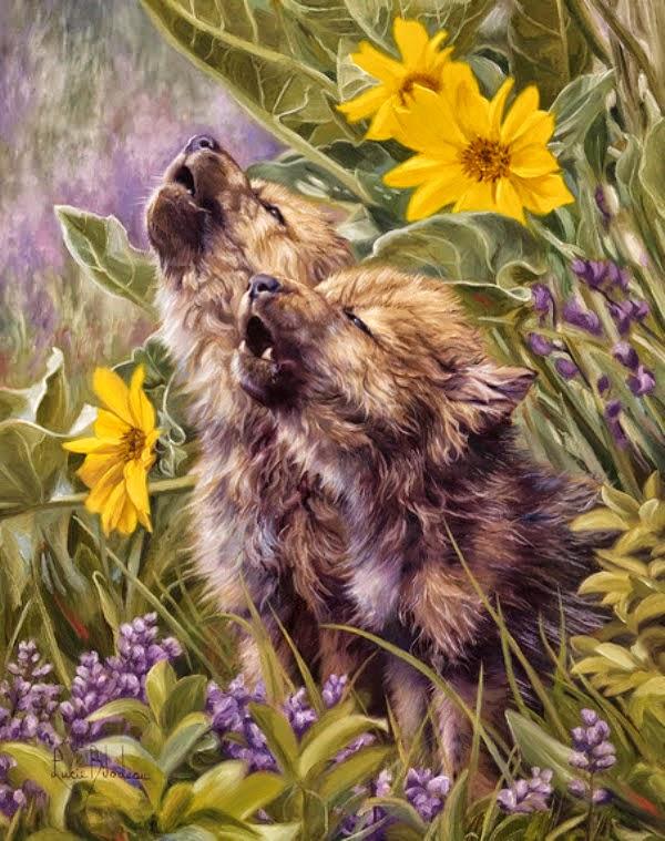 cuadros decorativos con lobos pinturas al oleo