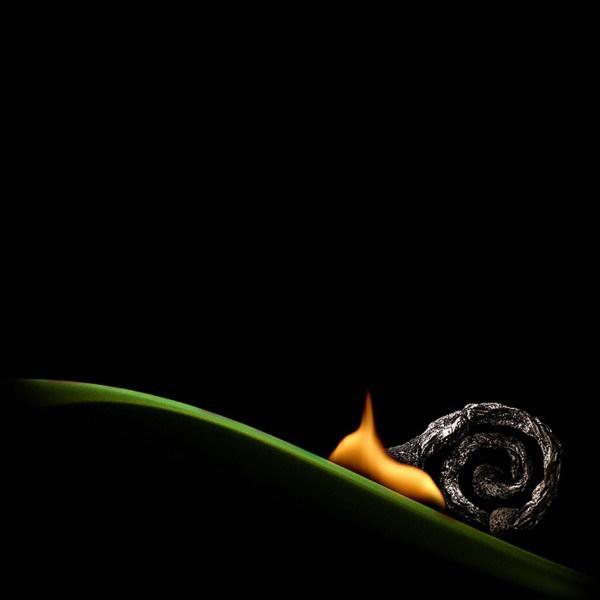 caracol con fuego