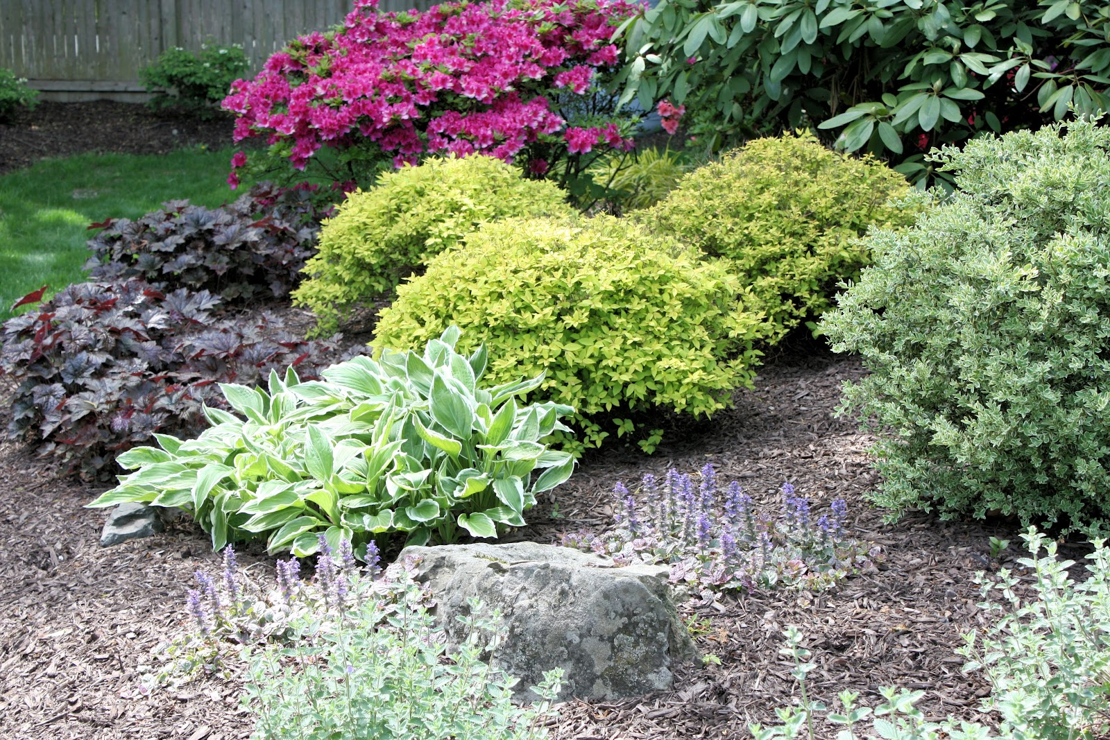 A GUIDE TO NORTHEASTERN GARDENING May 2012