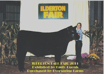 Ilderton Fair