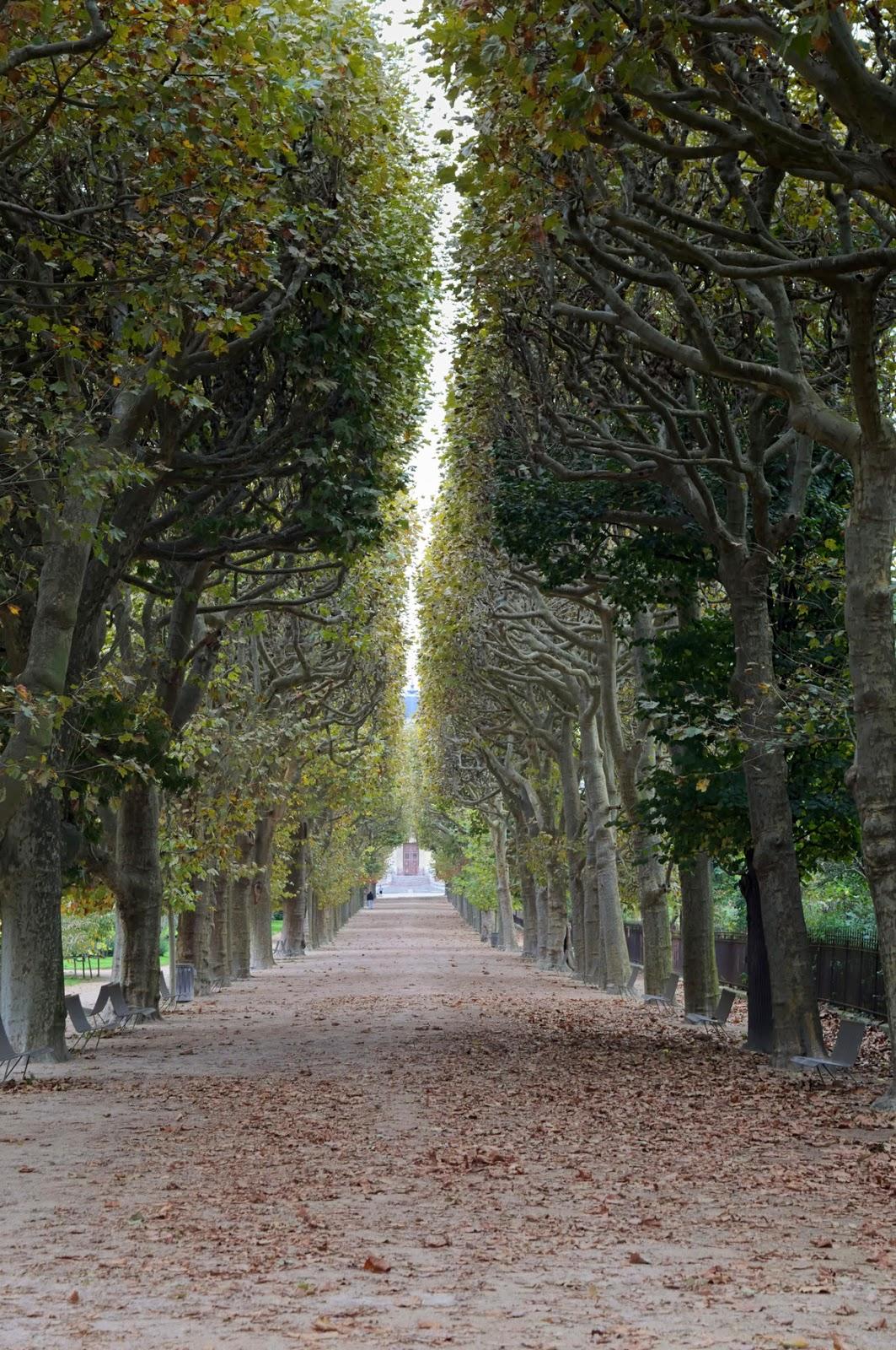 Jardin de plantes Paris.