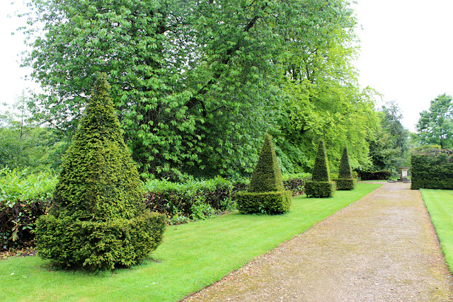 cut-bushes-neat-trees-green-garden-kingston-maurward-todaymyway.com