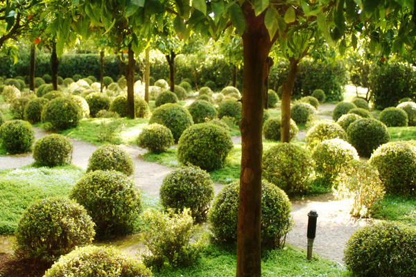 giardino garden luxury cafelab