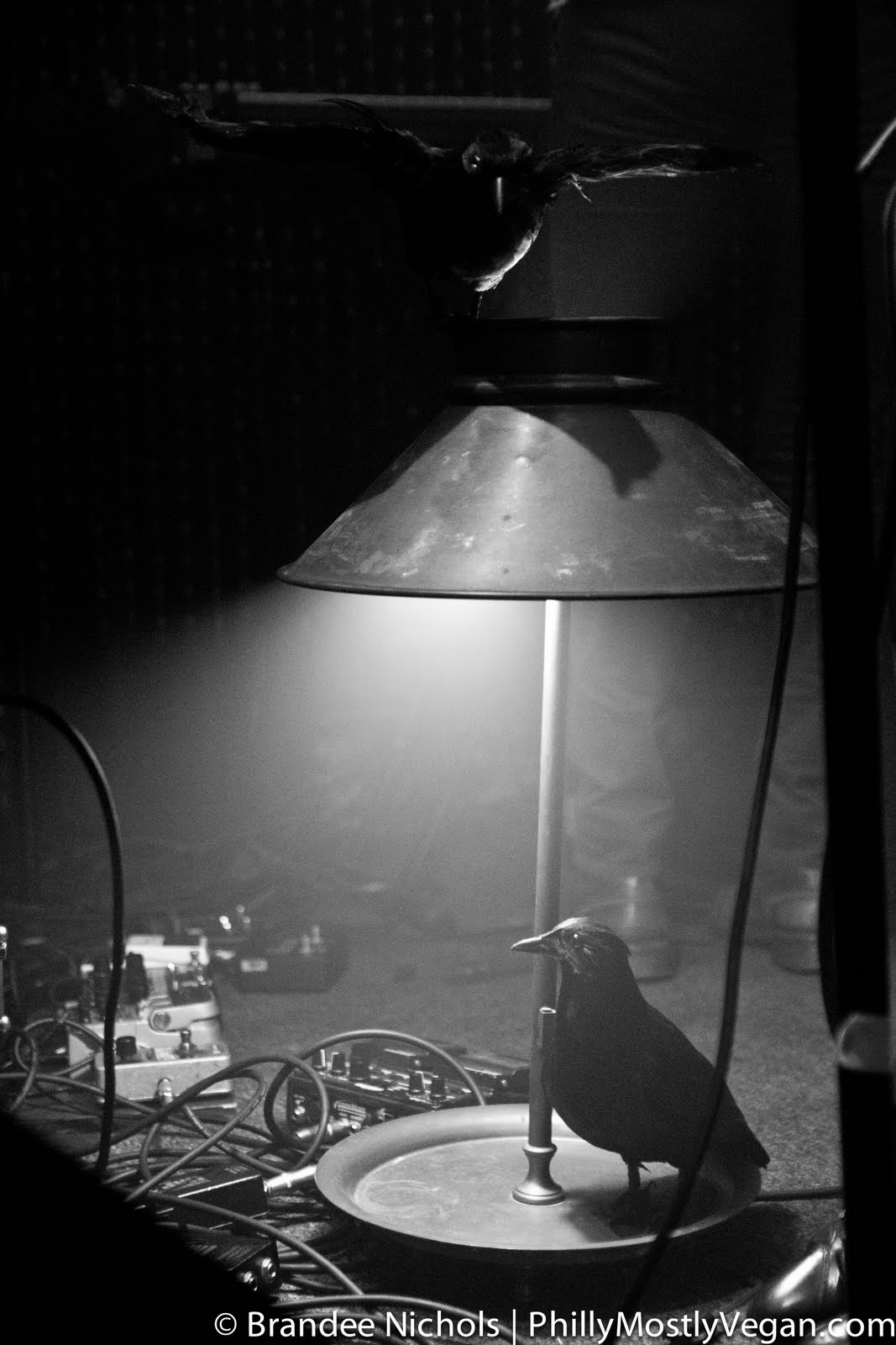 Brian+oblivion+madeline+follin
