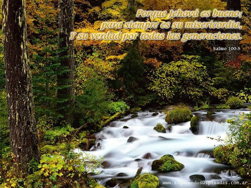 Jehová misericordia