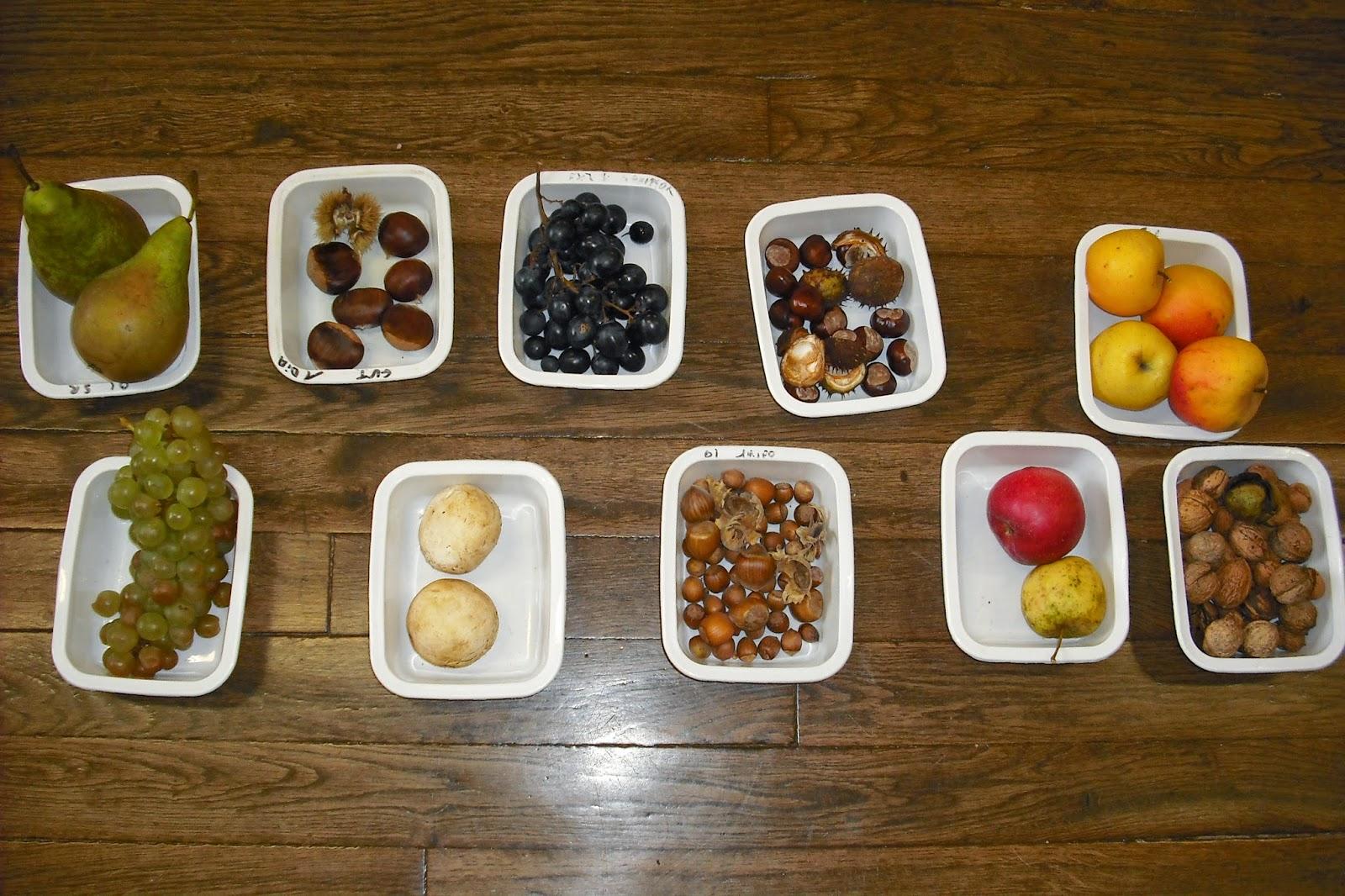 Ecole maternelle vitteaux les fruits de l 39 automne chez - Fruits automne maternelle ...