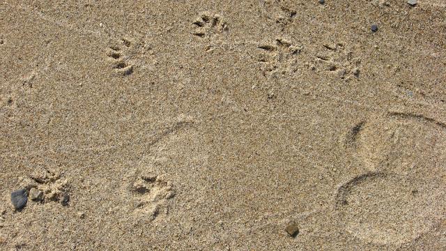 море, песок