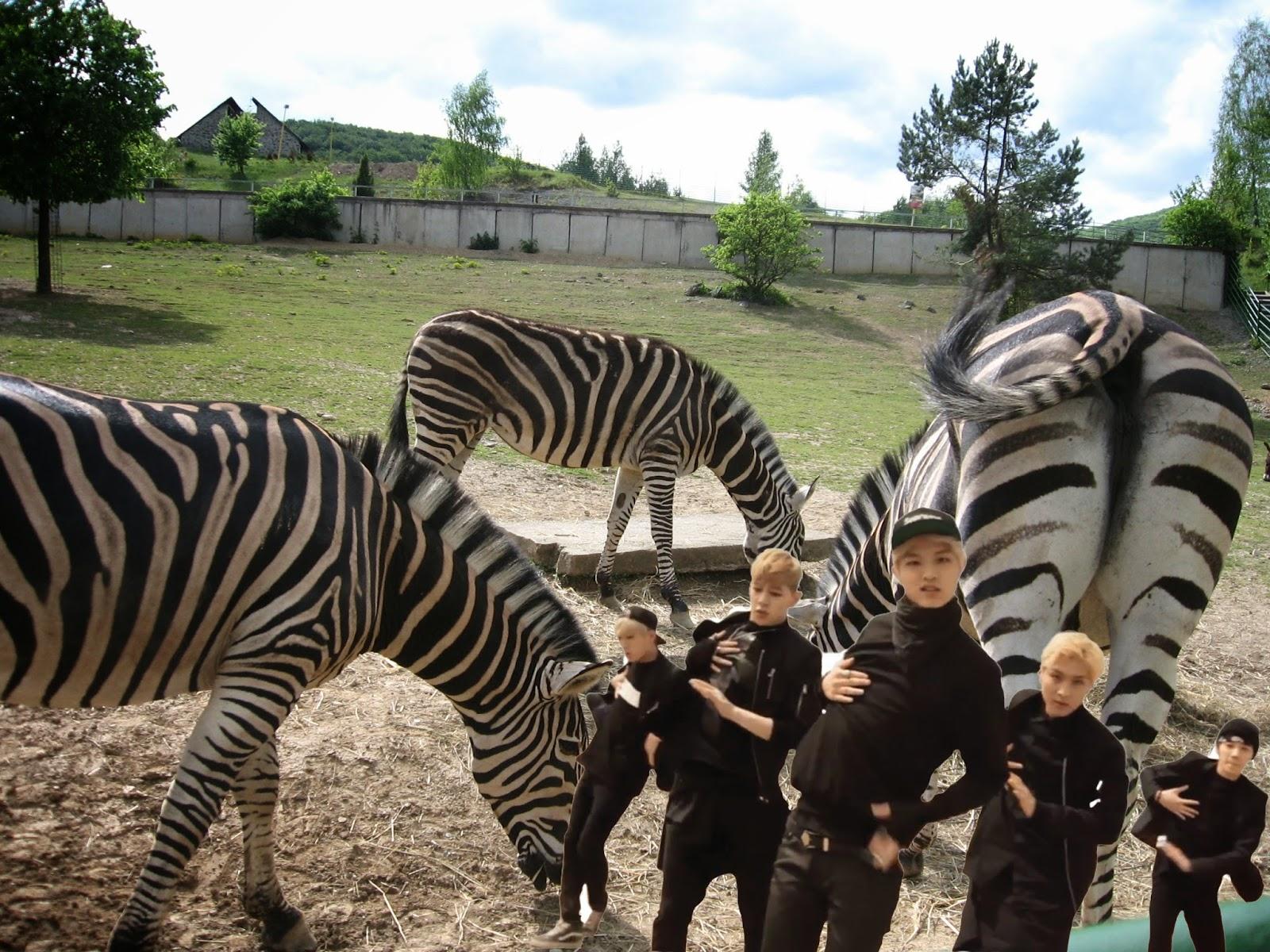 Шемале хентай и их мальчики 24 фотография