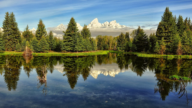 Nature scenery lake trees water reflection HD Wallpaper