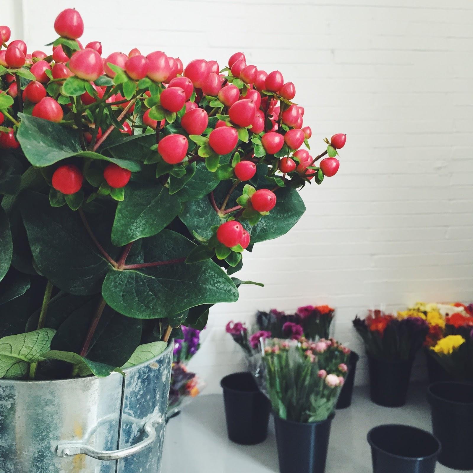 debenhams aw15 press day flowers