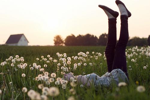 http://www.flickr.com/photos/lena_a/4595986219/