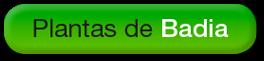 http://badiaverde.blogspot.com.es/search/label/Plantas%20de%20Badia