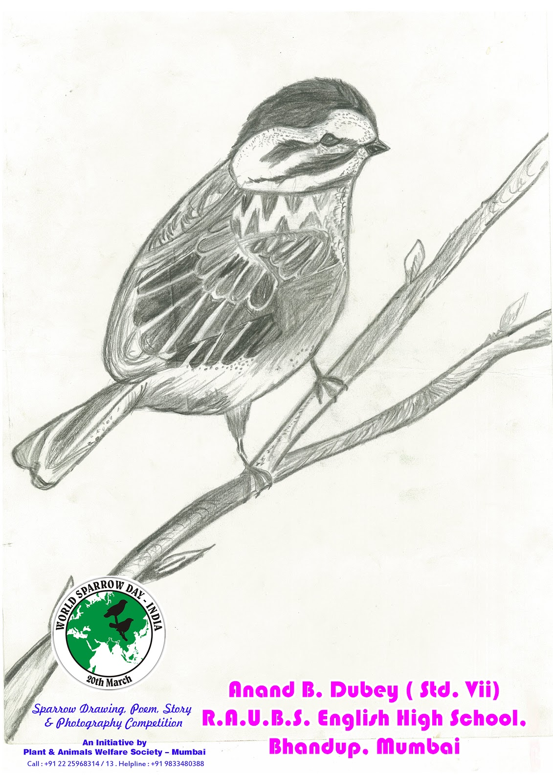 World Sparrow Day - India 2013 Competition Update