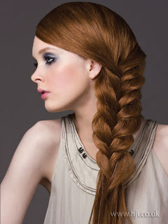 plaited hairstyle pictures - Celebrity Hairstyle ideas