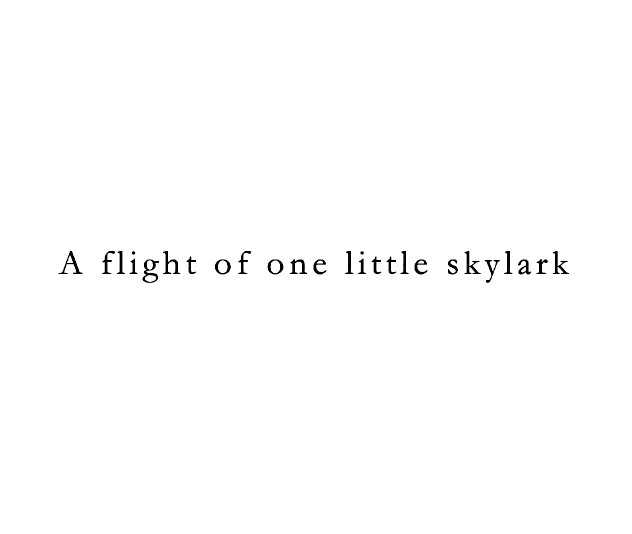 A flight of one little skylark