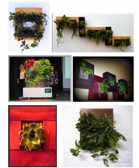 curso online jardines Perú