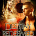 Nov 2011 Book Cover Award Entry #4: Destiny Redeemed | Designed by Elaina Lee