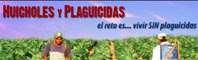 Huicholes Y Plaguicidas