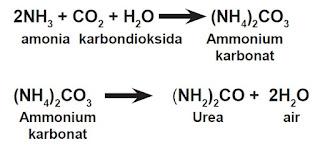Macam-Macam Pupuk Nitrogen (N)