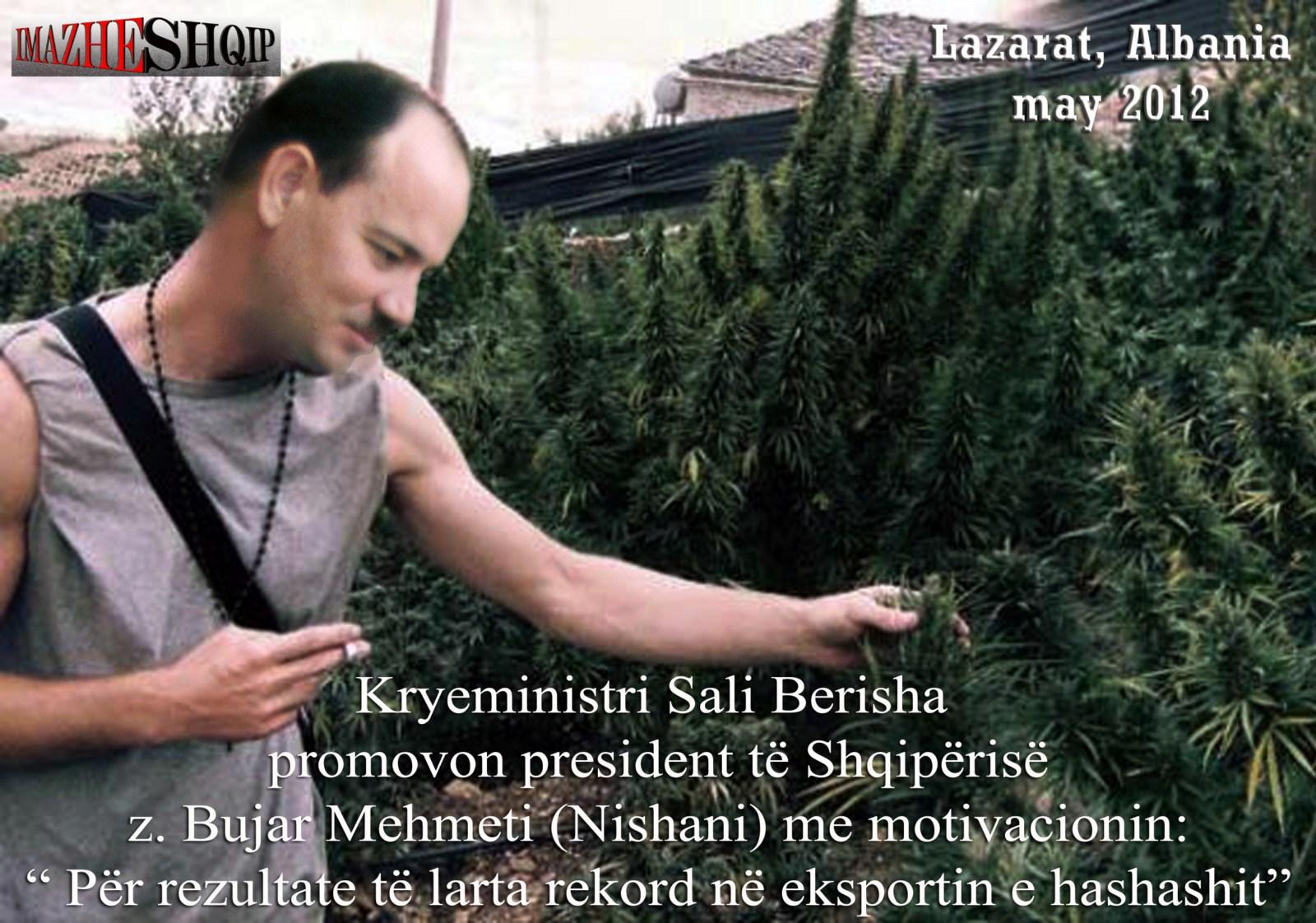 Bildergebnis für bujar nishani mehmeti
