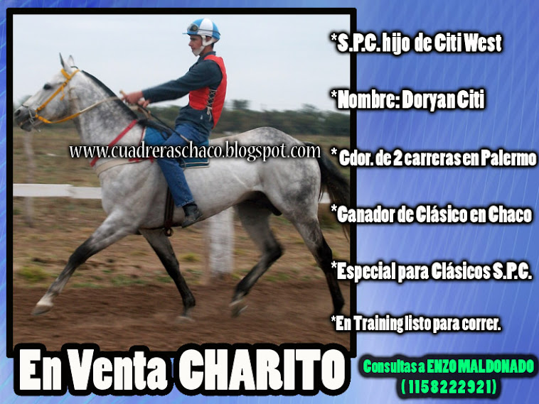 CHARITO EN VENTA