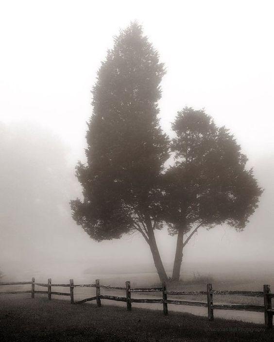 Bir hakarete yenik düşen ulu ağaç Bir yağmurdan medet umacak değil ya Akıp gidecek elbet aşka yenil