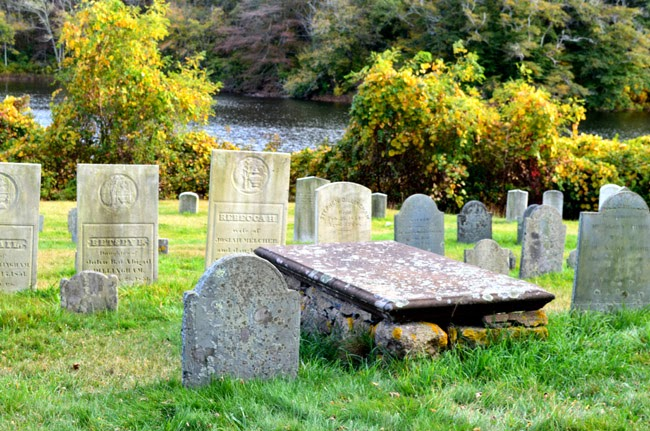 gravestones amidst green grass and shrubs