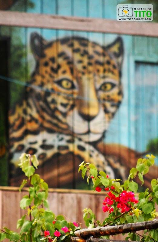 Flores e pintura de onça em casa de madeira na vila do Algodoal, na ilha de Maianeua, no Pará