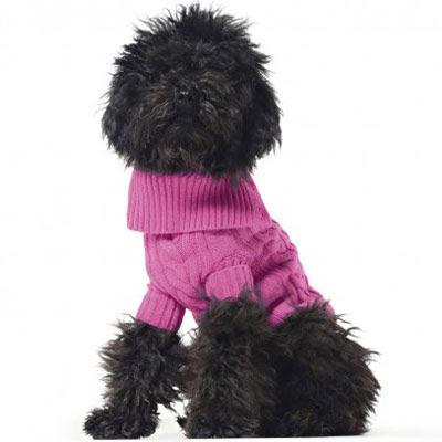 jerseys de lana para perros