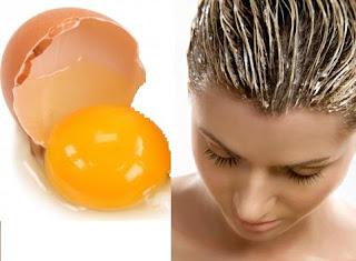 وصفات لتطويل الشعر باستخدام البيض