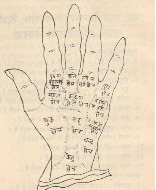 hand area