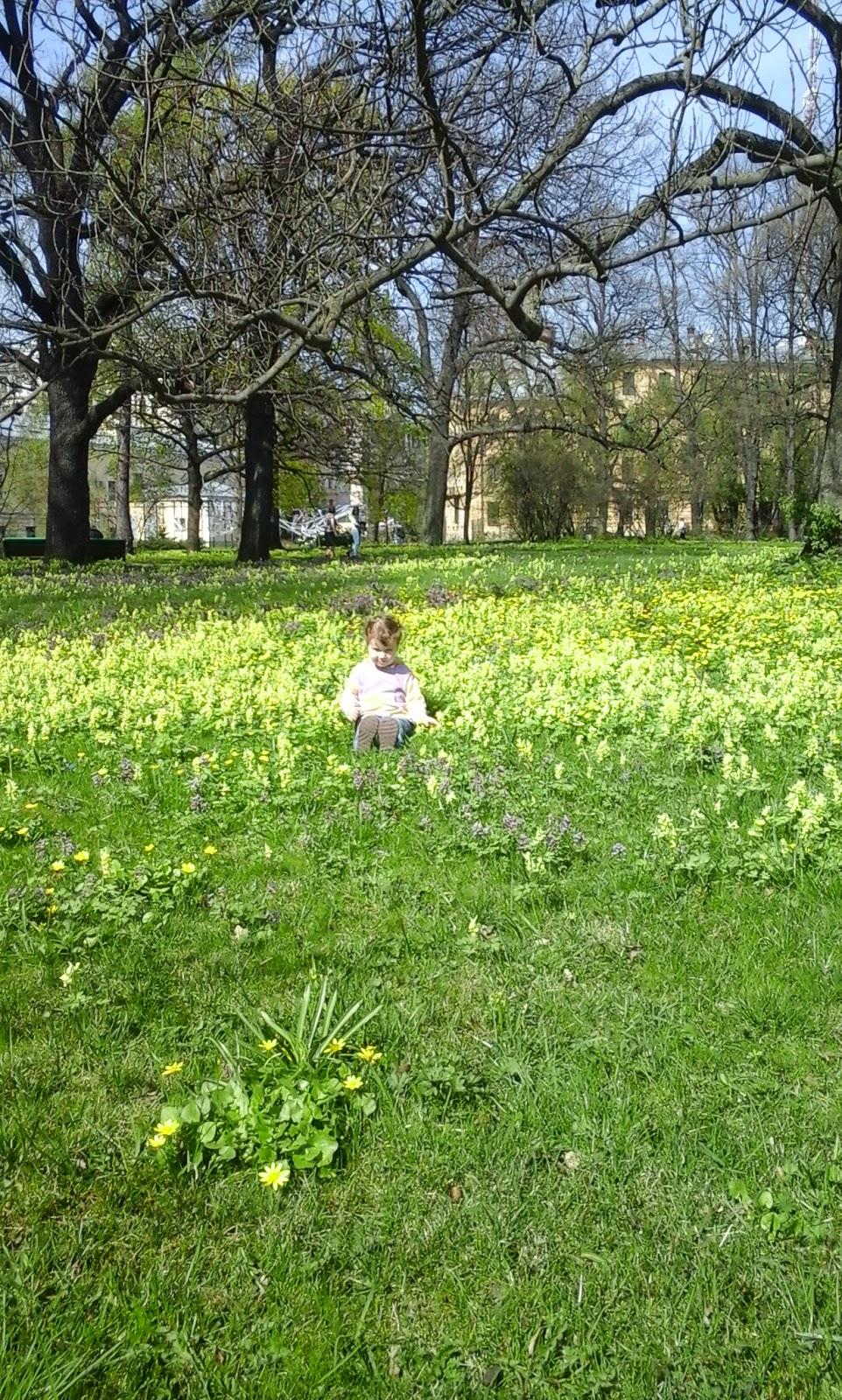Ботанический сад, ребенок, дочка, цветы, весна, солнце, радость, красота.