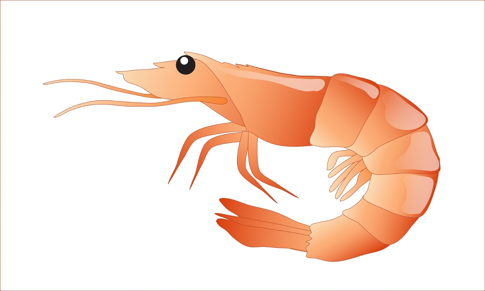 shrimp clipart shrimp boil pot clipart Shrimp Boil Sign