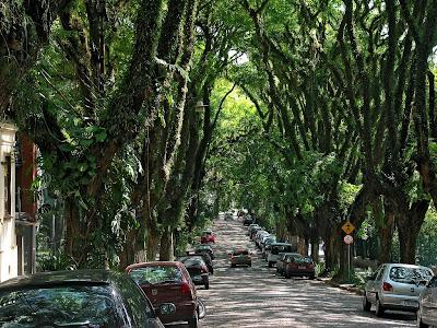 Stunning Street in Porto Alegre, Brazilia