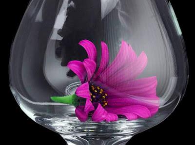 florales-bodegones