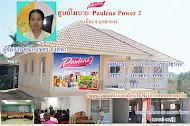โมบาย Paulena Power 2