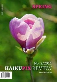 Haiku Pix Review