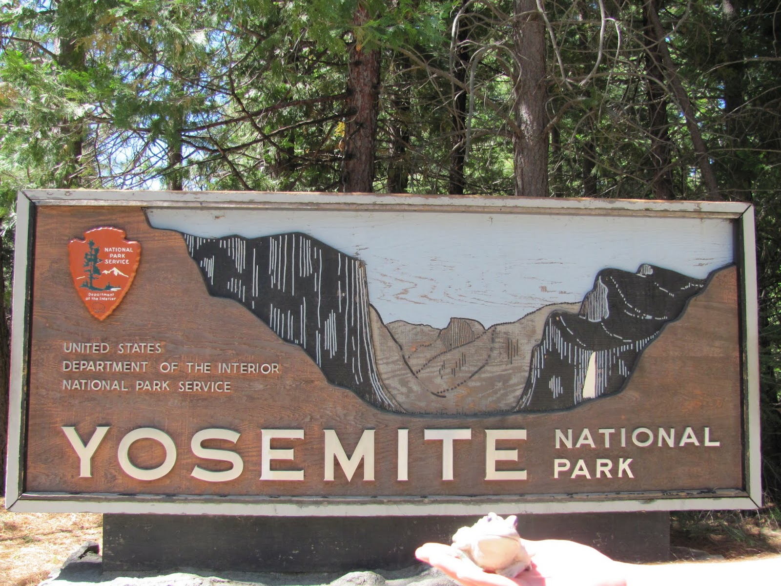 Frog poses in front of the Yosemite National Park, California welcome sign