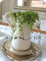 Blomst i gammel mugge