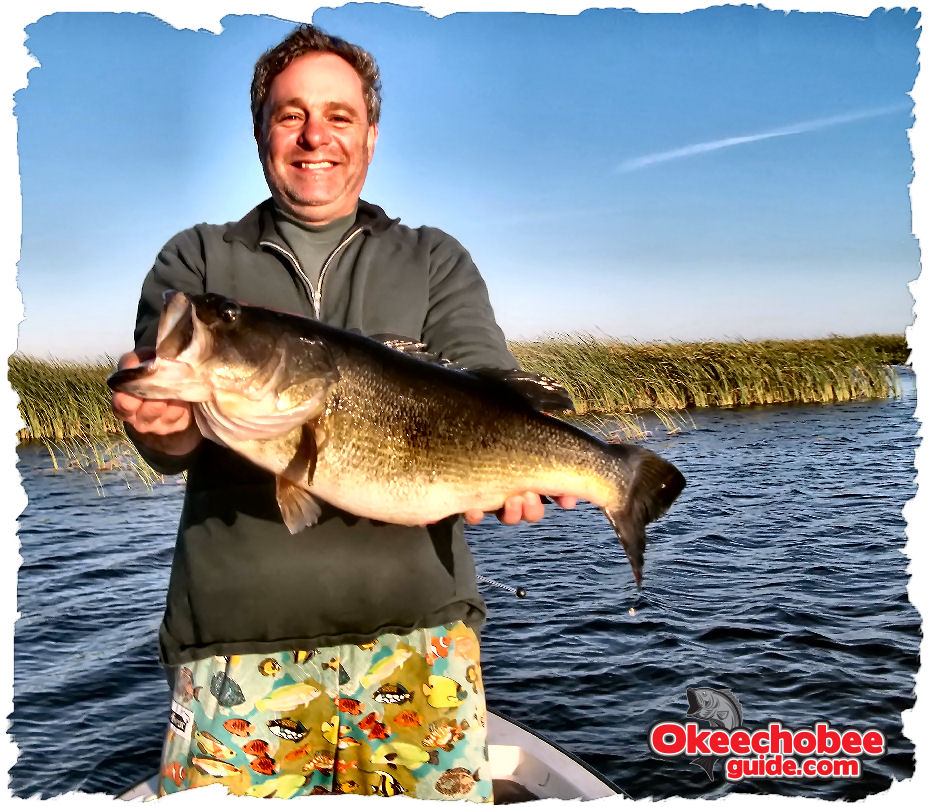 Okeechobee bass fishing general bass behavior and habits for Best bass fishing lakes
