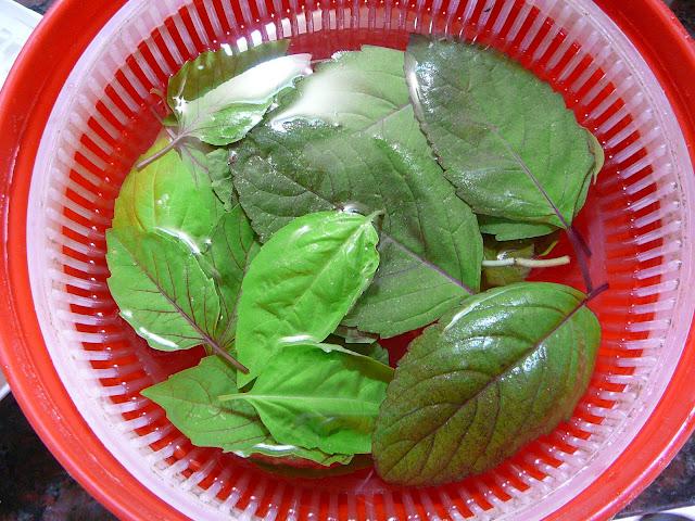 Ile recetas como tener hierbas y frescas todo el a o for Plantas aromaticas exterior todo el ano