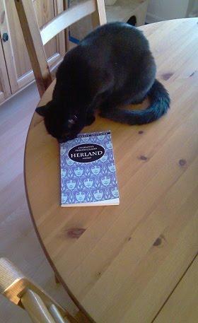 Katze beschnuppert Buch von Charlotte Perkins Gilman