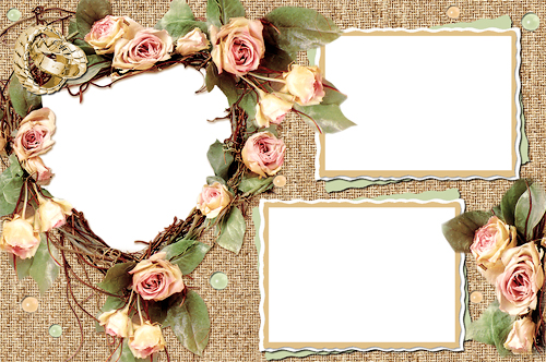 50 beautiful photoshop frame free download  free download