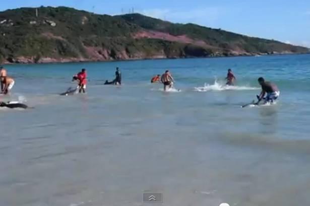 Beach goers photos 32