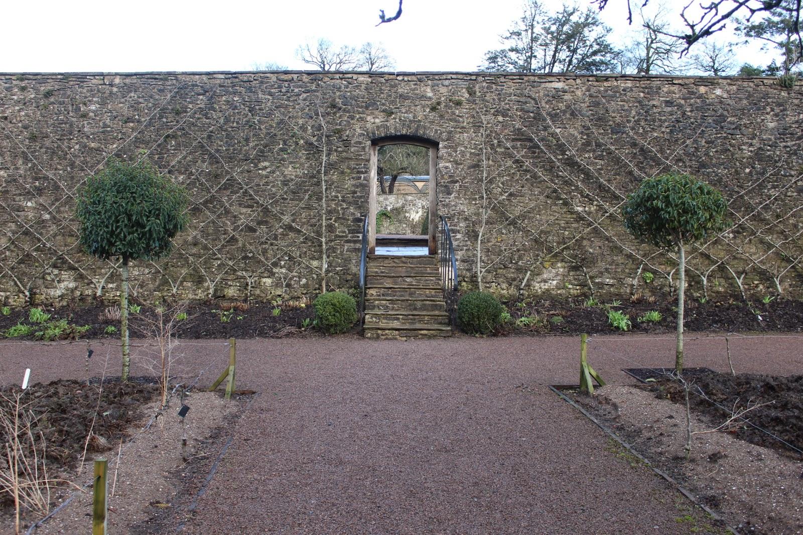 Belgian Fence at Aberglasney