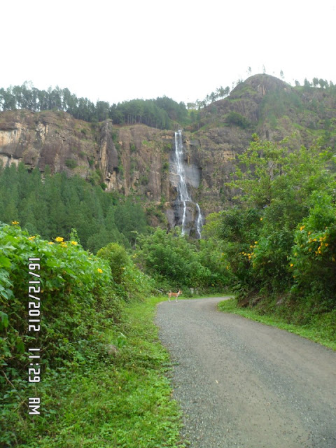 Bambarakanda Waterfalls Of Sri Lanka Bambarakanda Ella Srilanka Beautiful Places