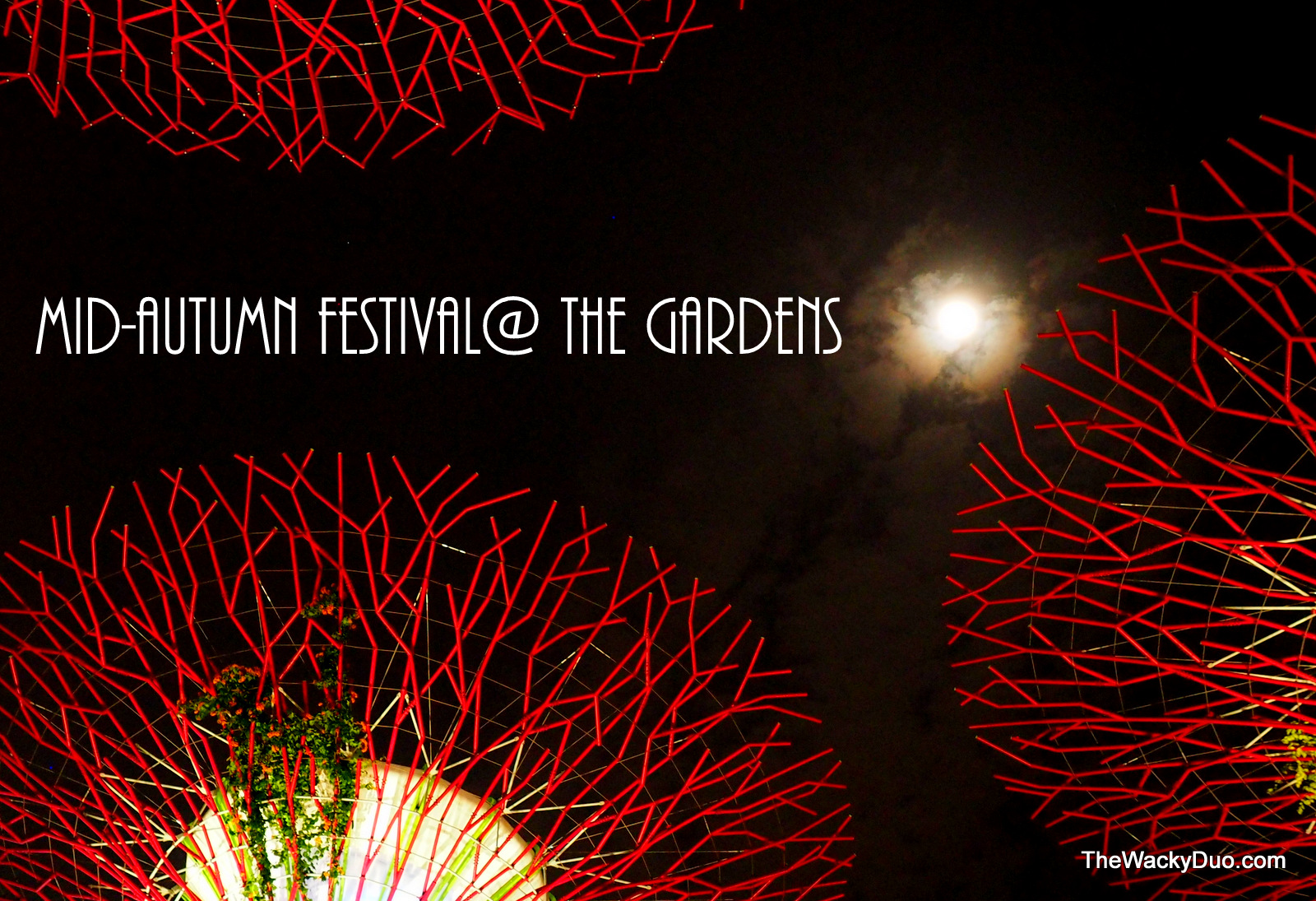 garden by the bay festival